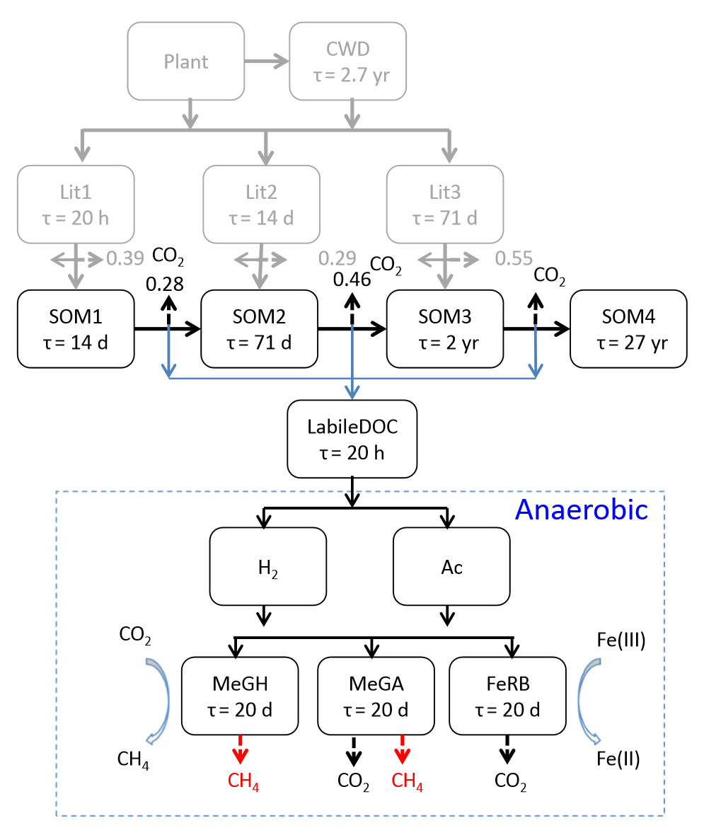 Biogeochemical modeling of co2 and ch4 production in for 0 4 soil carbon