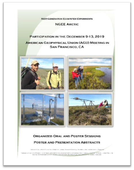 Cover of the NGEE Arctic AGU abstract booklet.